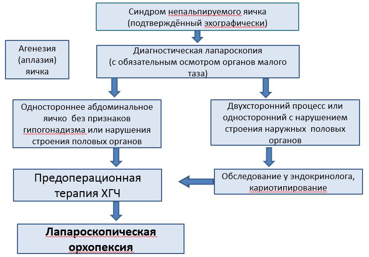 Криптофтальмоз